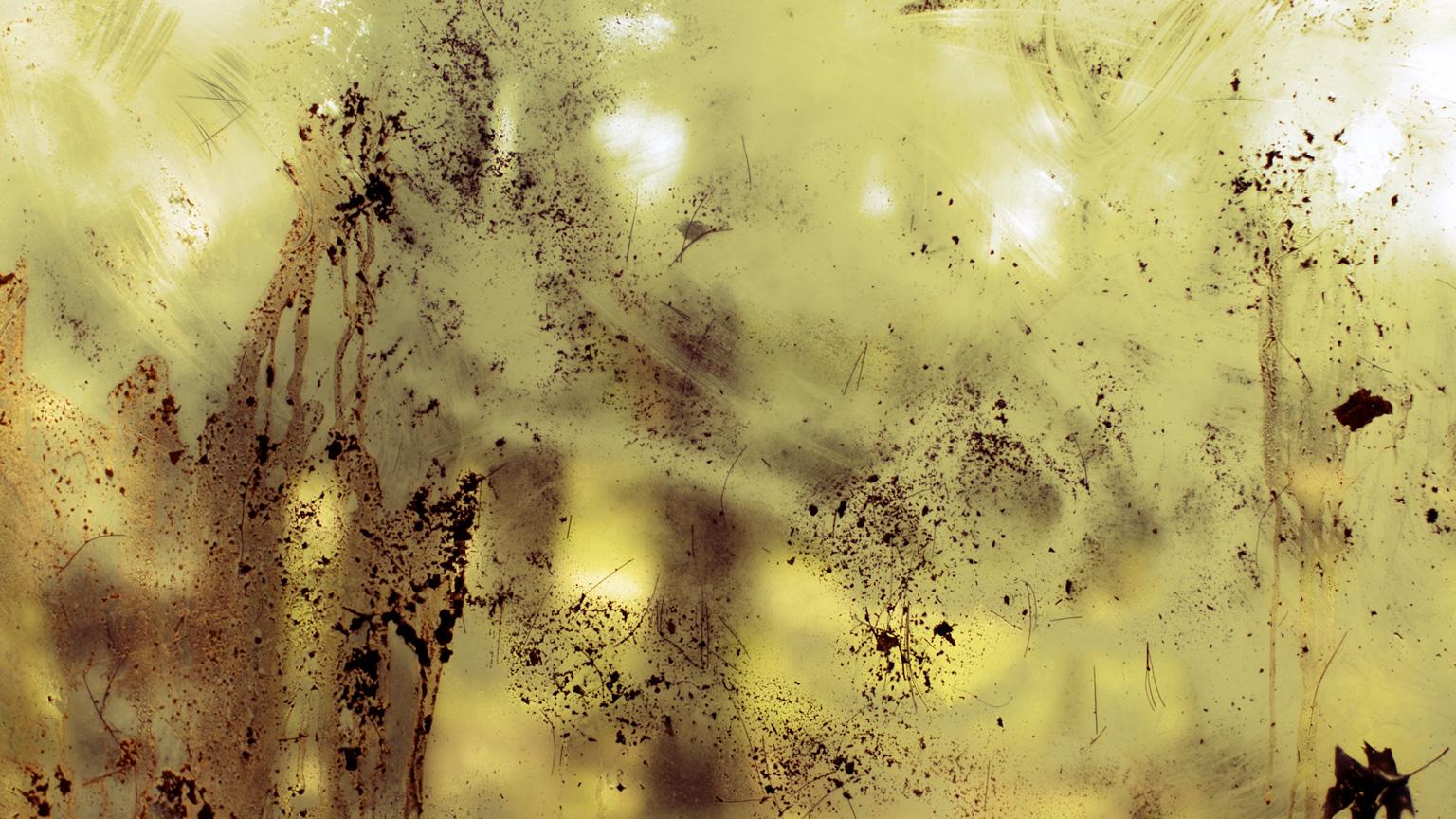 Conspiracy of Silence, Window 6 #001, 2009, C-Print