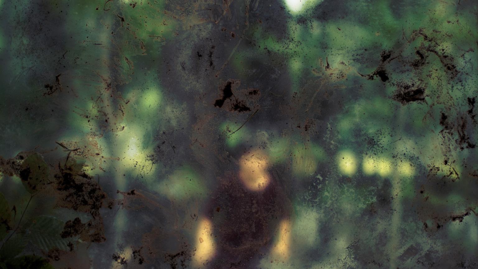 Conspiracy of Silence, Window 4 #313, 2009, C-Print