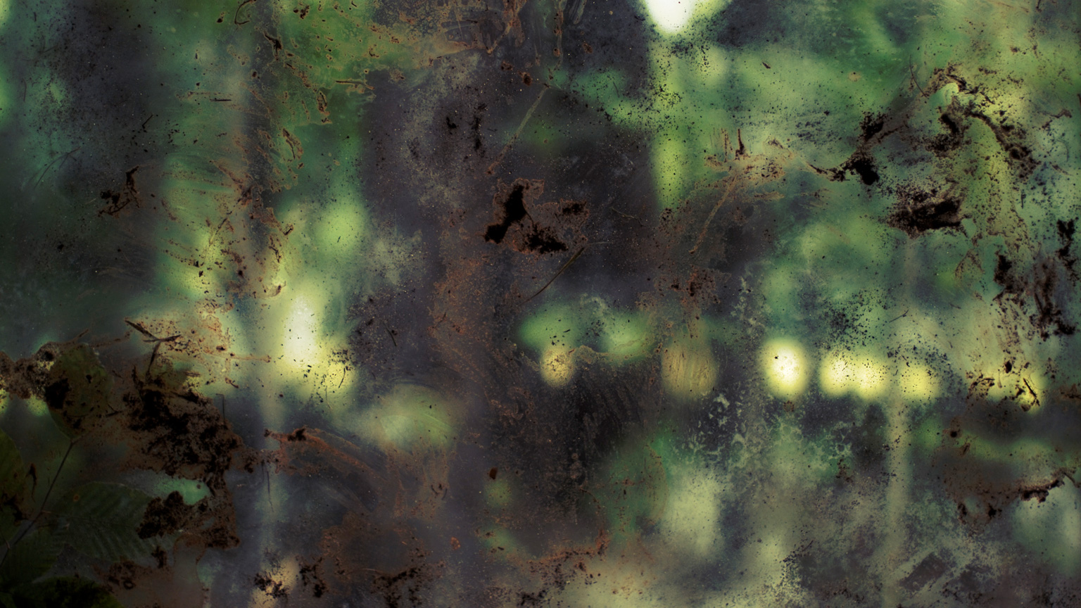 Conspiracy of Silence, Window 4 #383, 2009, C-Print