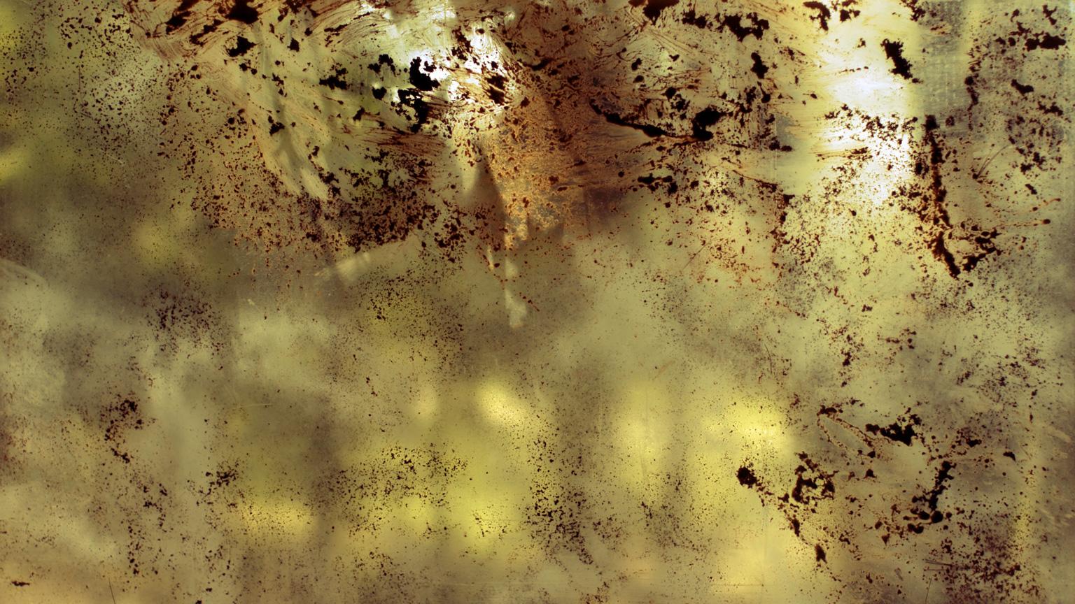 Conspiracy of Silence, Window 5 #592, 2009, C-Print