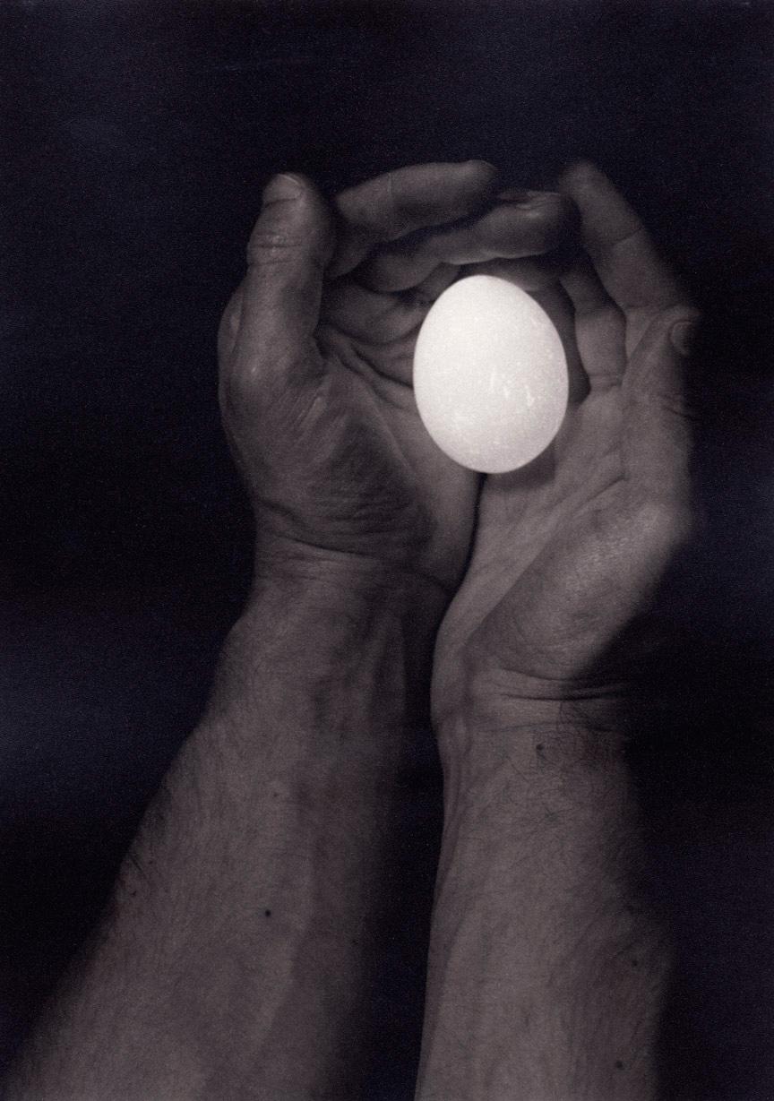 Life, 1998, Gelatin Silver Print